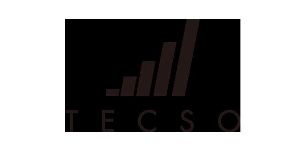 TECSO